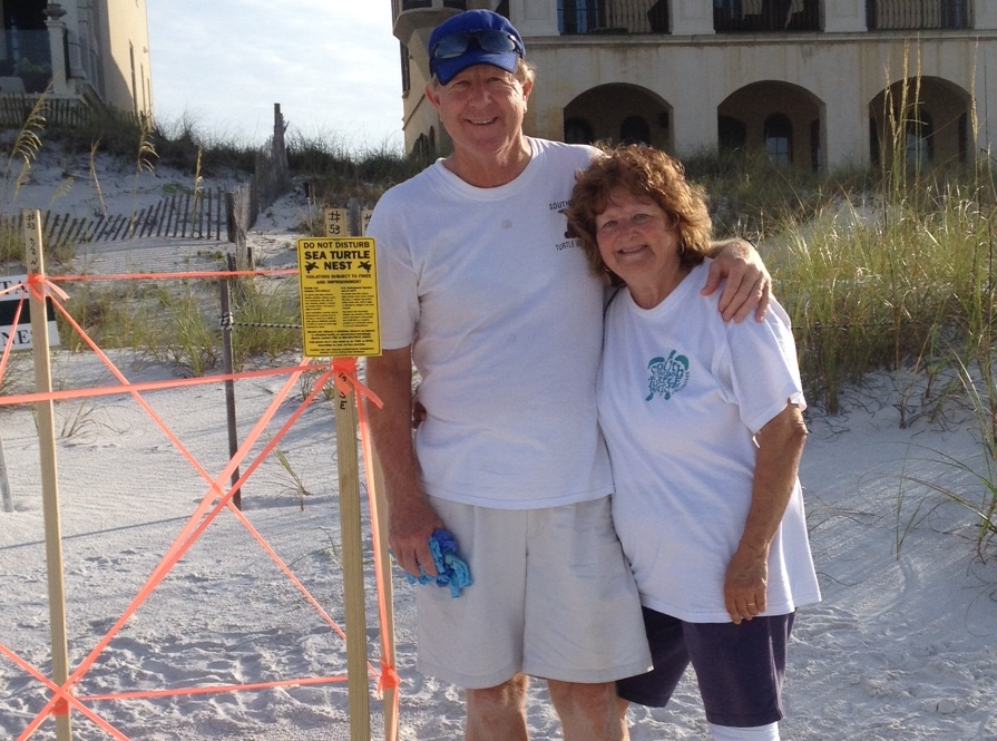 Long time walkers Bill and Shari found this loggerhead nest.  Beautiful as it was.  Congratulation.  So glad for you.